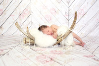Jadyn's Newborn Session