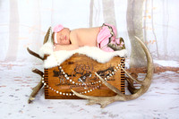 Tember's Newborn Session!