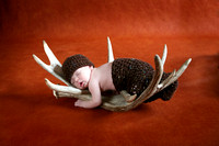 Seth's Newborn Session!