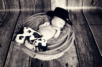 Lane's Newborn Session!