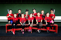 Lil' Redbirds Team Photos!