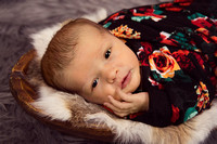 Brynlee's Newborn Session