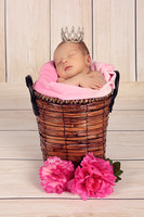 Gracelynne's Newborn Session!